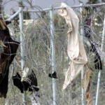Andalucía Acoge exige el respeto a los Derechos Humanos en las actuaciones de los cuerpos de seguridad en Melilla