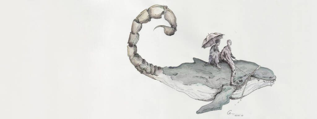 ballena aguja Malaga Acoge web