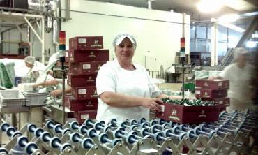 Una oportunidad laboral en Antequera