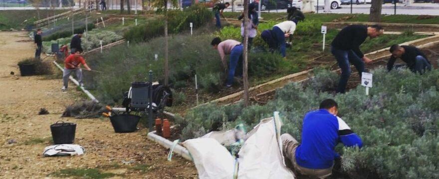 Las futuras auxiliares de mantenimiento de zonas verdes en Fuengirola